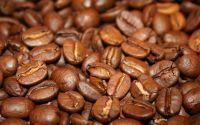Купить индийский кофе. Кофе из Индии интерн